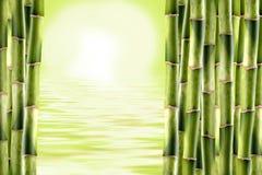 bambuskott fotografering för bildbyråer