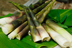 Bambuskott på bananbladet Royaltyfria Foton