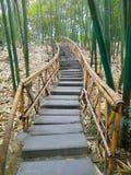 bambusowa ścieżka zdjęcia royalty free