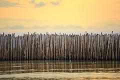Bambusowa bariera Fotografia Stock