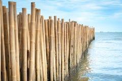 Bambusowa bariera Zdjęcie Royalty Free