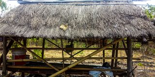 Bambusowa i słomiana buda zdjęcia stock