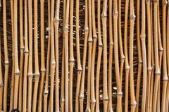 bambusowa konsystencja Fotografia Royalty Free