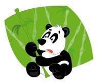 bambusowa panda Obrazy Stock