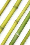 bambusowa przekątna Obrazy Stock