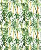 Bambusowa ręka rysująca Obrazy Royalty Free