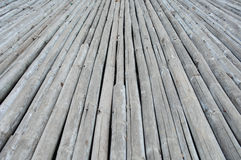 Bambusowa stara ziemia Obraz Royalty Free