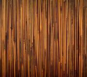 Bambusowa tekstura Obrazy Stock