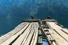 Bambusowa tratwa Zdjęcie Royalty Free