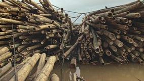 Bambusowa tratwa, bambus, bambusowy chińczyk, Asia zbiory