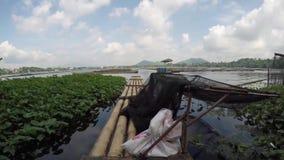 Bambusowa tratwa unosi się na zanieczyszczającym jeziorze zbiory wideo