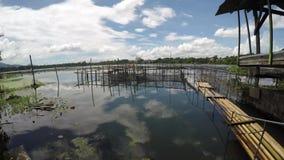 Bambusowa tratwa zakotwiczał wzdłuż brzeg jezioro zbiory