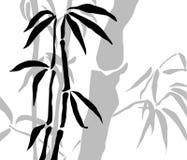 bambusowe gałąź Zdjęcie Royalty Free
