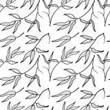 Bambusowego liścia czarny i biały bezszwowy deseniowy tło Fotografia Stock