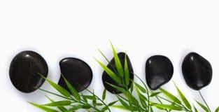 bambusowi liść masażu zdroju kamienie obraz stock
