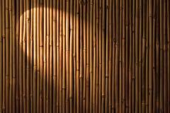 Bambusowy światła reflektorów tło Zdjęcia Royalty Free