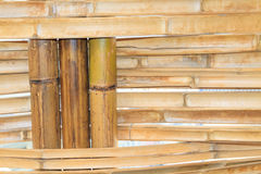 Bambusowy budowy wnętrza widok Fotografia Royalty Free