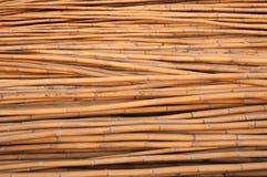 Bambusowy drewno Obraz Stock