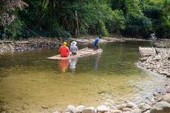 Bambusowy flisactwo w zielonej tropikalnej scenerii Fotografia Stock