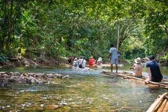Bambusowy flisactwo w zielonej tropikalnej scenerii Fotografia Royalty Free