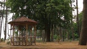 Bambusowy gazebo w parku zbiory wideo