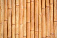 Bambusowy kija wzór, materiału budowlanego tło zdjęcia stock