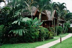 Bambusowy kurort w Pai, północny Tajlandia zdjęcie royalty free