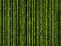 bambusowy las Obrazy Royalty Free