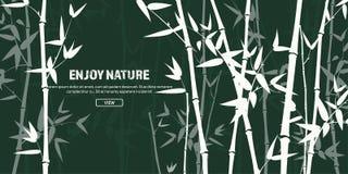 Bambusowy lasu set Natura Japonia lub Chiny Zielonej rośliny drzewo z liśćmi Tropikalny las deszczowy w Azja ilustracji