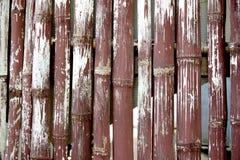 Bambusowy ogrodzenie Zdjęcia Royalty Free