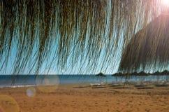 Bambusowy parasol, plaża, egzot, Obrazy Royalty Free