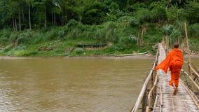 Bambusowy przespacerowanie Zdjęcia Stock