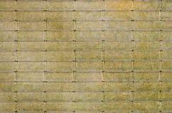 bambusowy rocznik Fotografia Royalty Free