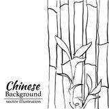 Bambusowy tło dla druku, skrót, filiżanka również zwrócić corel ilustracji wektora Zdjęcia Stock