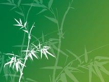 Bambusowy tło Obrazy Stock