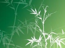 Bambusowy tło ilustracja wektor