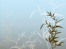 Bambusowy tło ilustracji