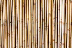 Bambusowy tło w pionowo linii Zdjęcie Royalty Free