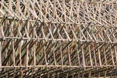 Bambusowy tunel Obraz Stock