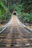 Bambusowy tunelu most Zdjęcia Stock
