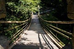 Bambusowy zwyczajny zawieszenie most zdjęcia stock