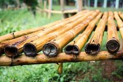 Bambussänftenweichzeichnung Stockbilder