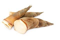 Bambusschosse Stockbild