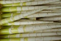 Bambusschosse Makino Lizenzfreie Stockfotos