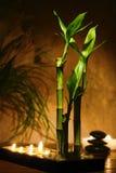 Bambusstämme mit Kerzen für Meditation Lizenzfreies Stockbild