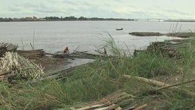 Bambusstöcke, der Mekong, Kambodscha, Südostasien stock video