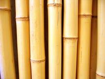 Bambussteuerknüppel Lizenzfreies Stockfoto