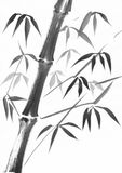 Bambusstielaquarellstudie Stockfoto