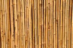 bambustaket Royaltyfria Foton