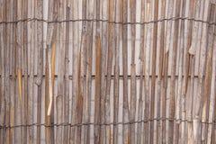 Bambustaket 3 royaltyfri foto